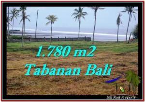 Exotic Tabanan Selemadeg BALI LAND FOR SALE TJTB249