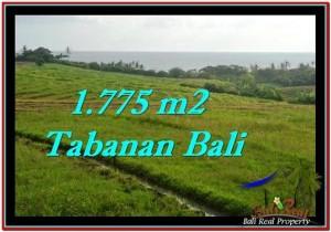 Affordable Tabanan Selemadeg BALI LAND FOR SALE TJTB251