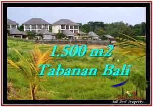 Affordable Tabanan Selemadeg BALI LAND FOR SALE TJTB252
