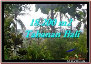 Beautiful PROPERTY TABANAN LAND FOR SALE TJTB254