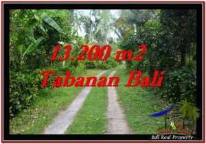 FOR SALE Magnificent PROPERTY 13,200 m2 LAND IN TABANAN BALI TJTB255