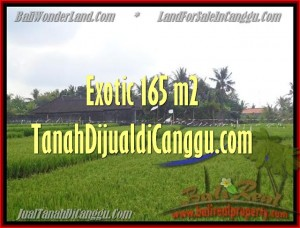 Exotic PROPERTY LAND SALE IN Canggu Cemagi BALI TJCG158