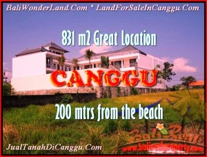 Affordable PROPERTY Canggu Batu Bolong BALI LAND FOR SALE TJCG160