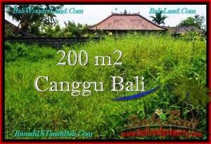 Exotic CANGGU 200 m2 LAND FOR SALE TJCG190