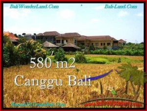 Magnificent LAND IN Canggu Pererenan BALI FOR SALE TJCG197