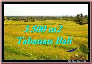 Beautiful PROPERTY 3,500 m2 LAND IN Tabanan Selemadeg FOR SALE TJTB259