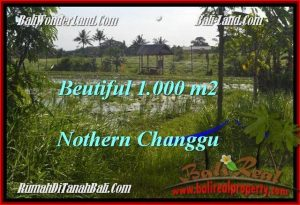 FOR SALE Affordable LAND IN Canggu Batu Bolong  TJCG180