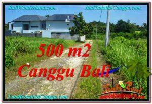 Magnificent PROPERTY LAND SALE IN Canggu Brawa BALI TJCG201