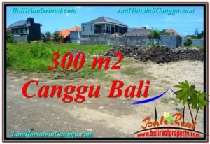 Exotic PROPERTY 300 m2 LAND FOR SALE IN CANGGU BALI TJCG203