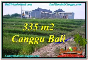FOR SALE Affordable PROPERTY 335 m2 LAND IN CANGGU TJCG204