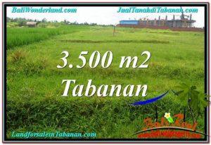 LAND FOR SALE IN Tabanan Kerambitan BALI TJTB302
