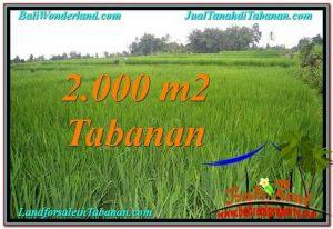 Affordable LAND IN Tabanan Penebel BALI FOR SALE TJTB303