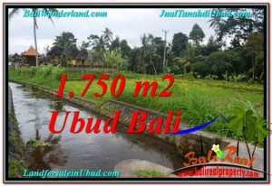 Magnificent UBUD BALI 715 m2 LAND FOR SALE TJUB557