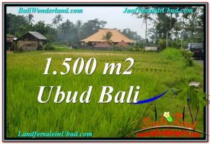 Beautiful 1,500 m2 LAND SALE IN UBUD BALI TJUB558