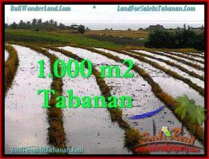 Exotic PROPERTY LAND FOR SALE IN TABANAN TJTB261