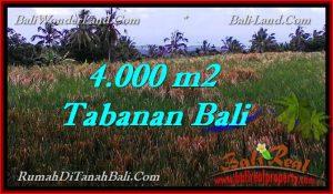 Affordable PROPERTY TABANAN BALI 4,000 m2 LAND FOR SALE TJTB288