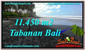 Beautiful PROPERTY 11,450 m2 LAND FOR SALE IN Tabanan Kerambitan TJTB291