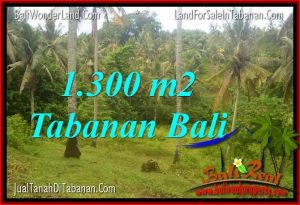 Exotic LAND SALE IN Tabanan Selemadeg TJTB314