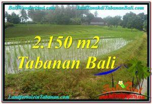 FOR SALE Exotic LAND IN TABANAN BALI TJTB312